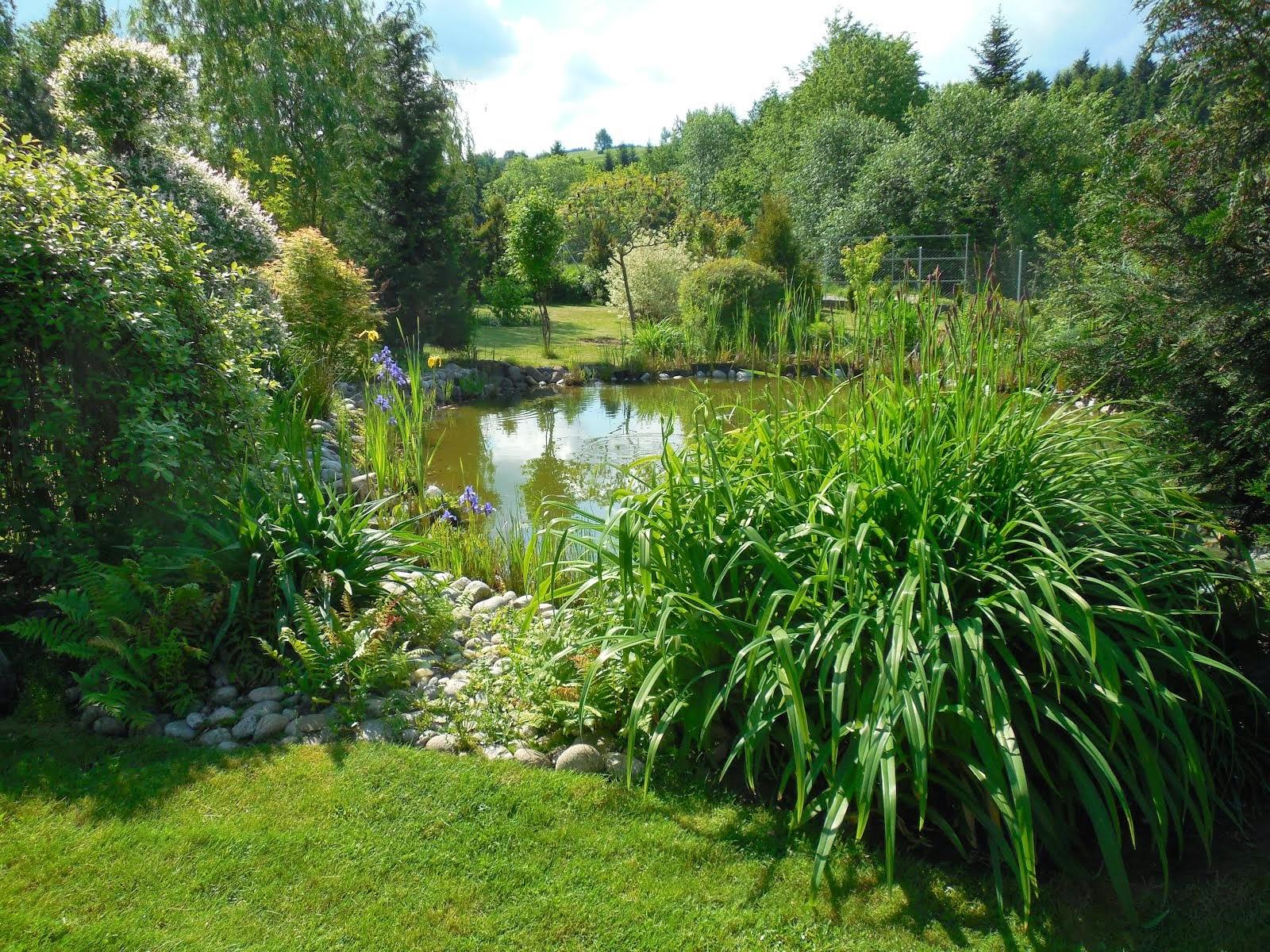Ogród Marzeń - FUNDACJA OGRÓD KWIATÓW