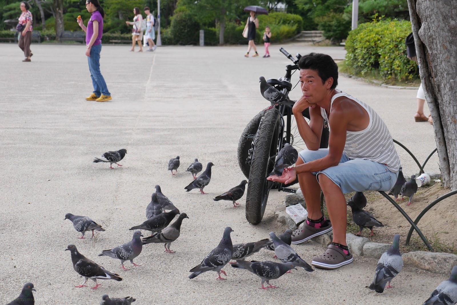 Osaka Birdman