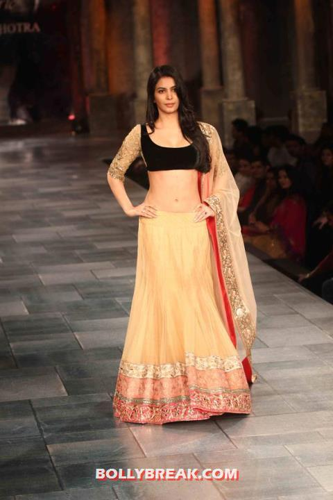 Ankita Shorey navel show in manish malhotra dress - Ankita Shorey Navel Show - Manish Malhotra Mijwan Fashion Show 2012