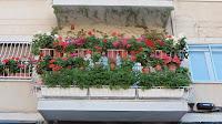 Fiestas de Tetuán 2016: ¡El balcón más bonito!