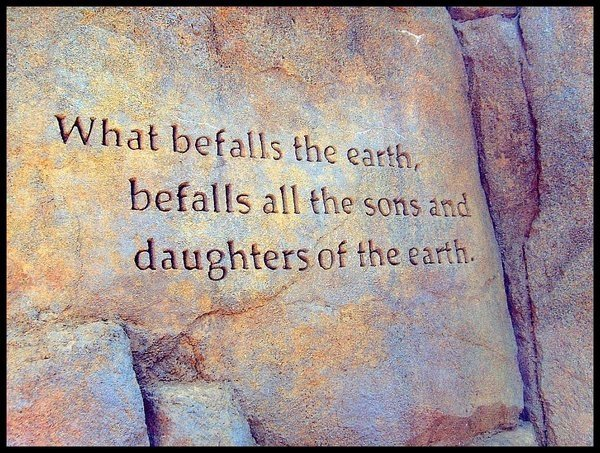 White Wolf : Native American Quotes about Mother Earth