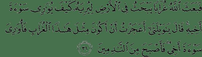 Surat Al-Maidah Ayat 31