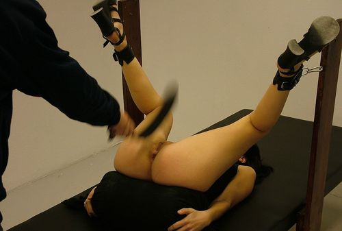 Pussy Belting 24