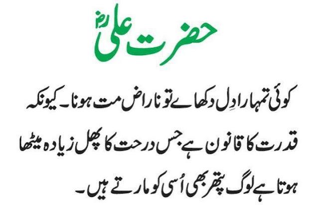 Beautiful Aqwal E Zareen Hazrat Ali In Urdu ~ Wallpapers, Pictures ...
