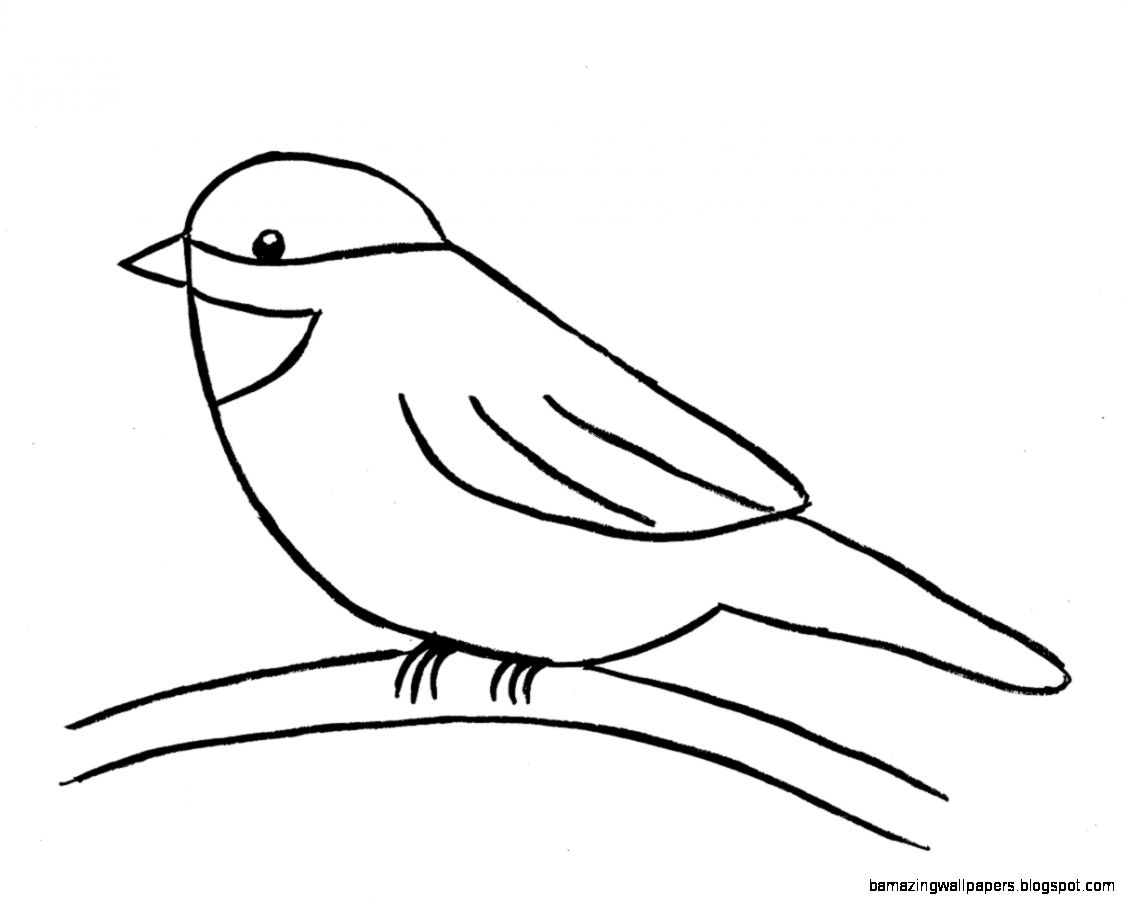 Simple Bird Line Art : Simple bird drawing for kids amazing wallpapers