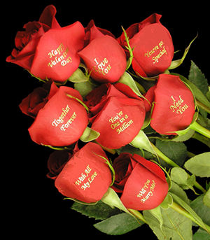 7th February 2014} is Rose Day. Wishing You All Happy Rose Day .