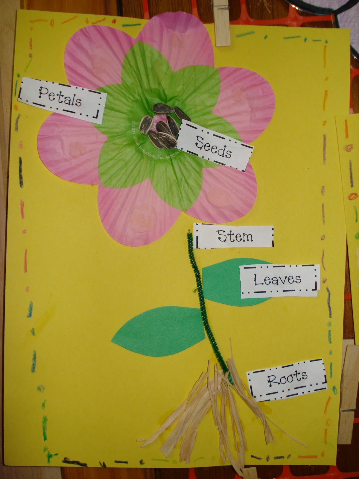 Parts of a Flower Primary Press