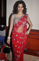 Vedhika in Saree 2.jpg