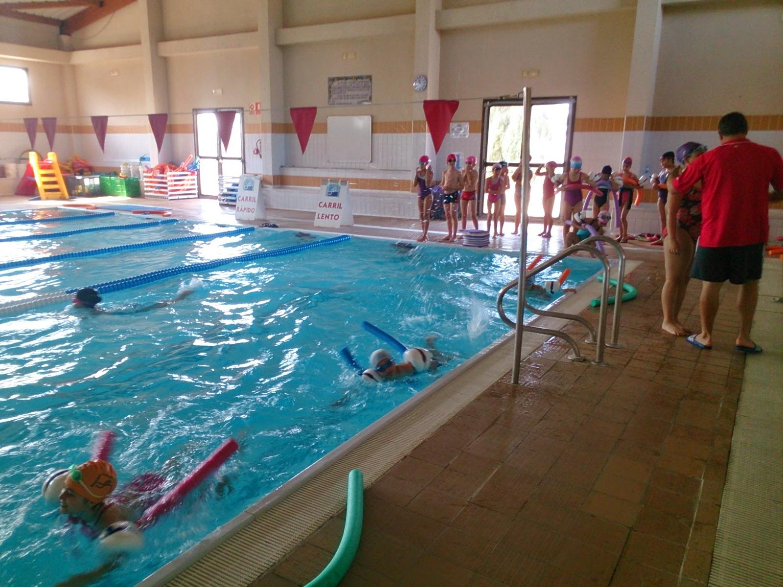 Educaci f sica ceip pio xii nataci a 3r for Piscina nules