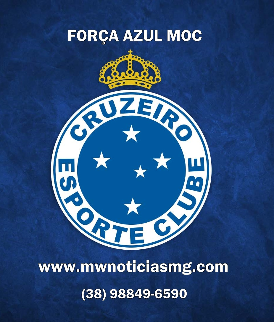 TORCIDA FORÇA AZUL DE MONTES CLAROS MG
