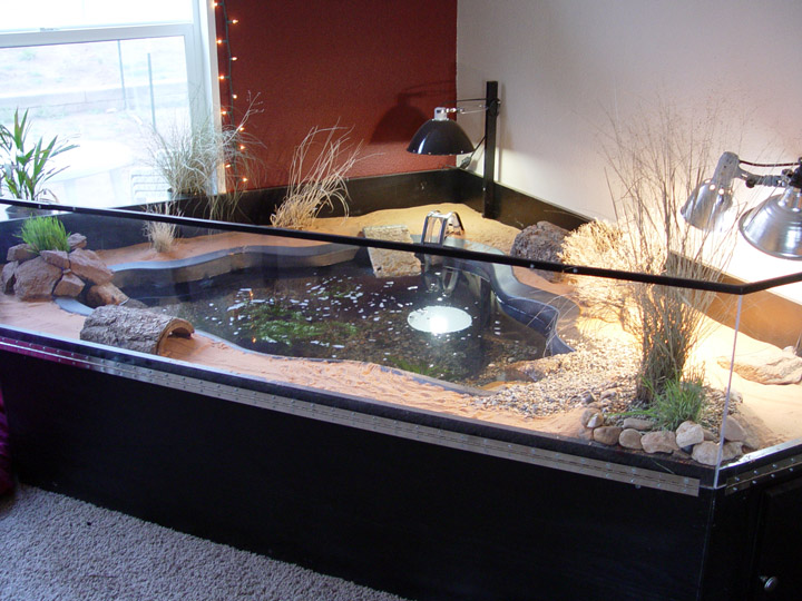 Indoor Pond Habitat , via Tortoise Trust