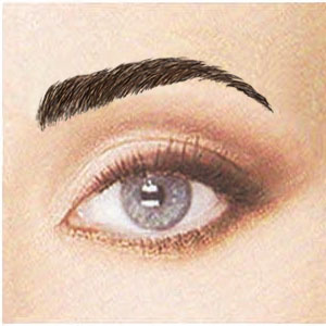 lynne 39 s wig boutique new temporary eyebrow tattoos