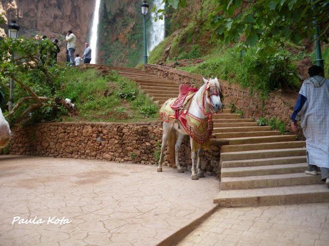 marrocos - Na Terra do Sol Poente - Viagem a solo por Marrocos - Página 2 IMGP0489