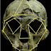 Alien Skull - 'Hobbit' Skull Found In Indonesia Is Not Human : Scientists