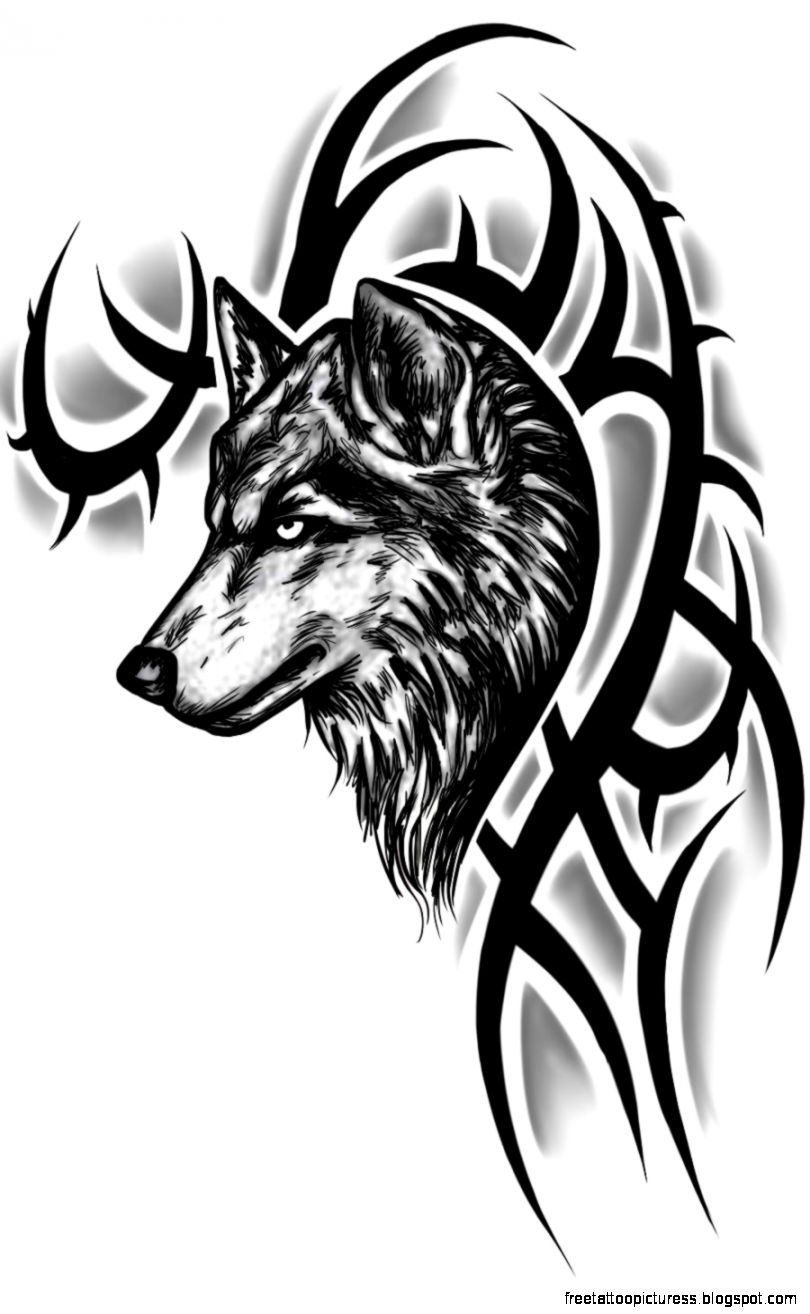 Wolf Tattoo Designs  Good Tattoo Ideas