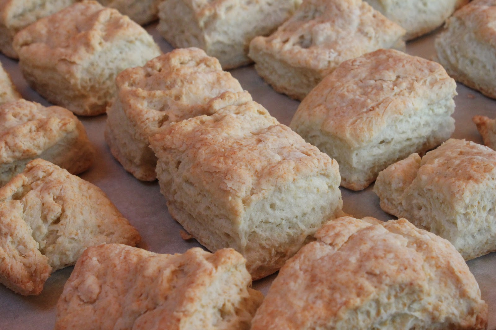 Easy Biscuits With Yogurt