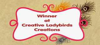 Winner - Creative Ladybirds Creations