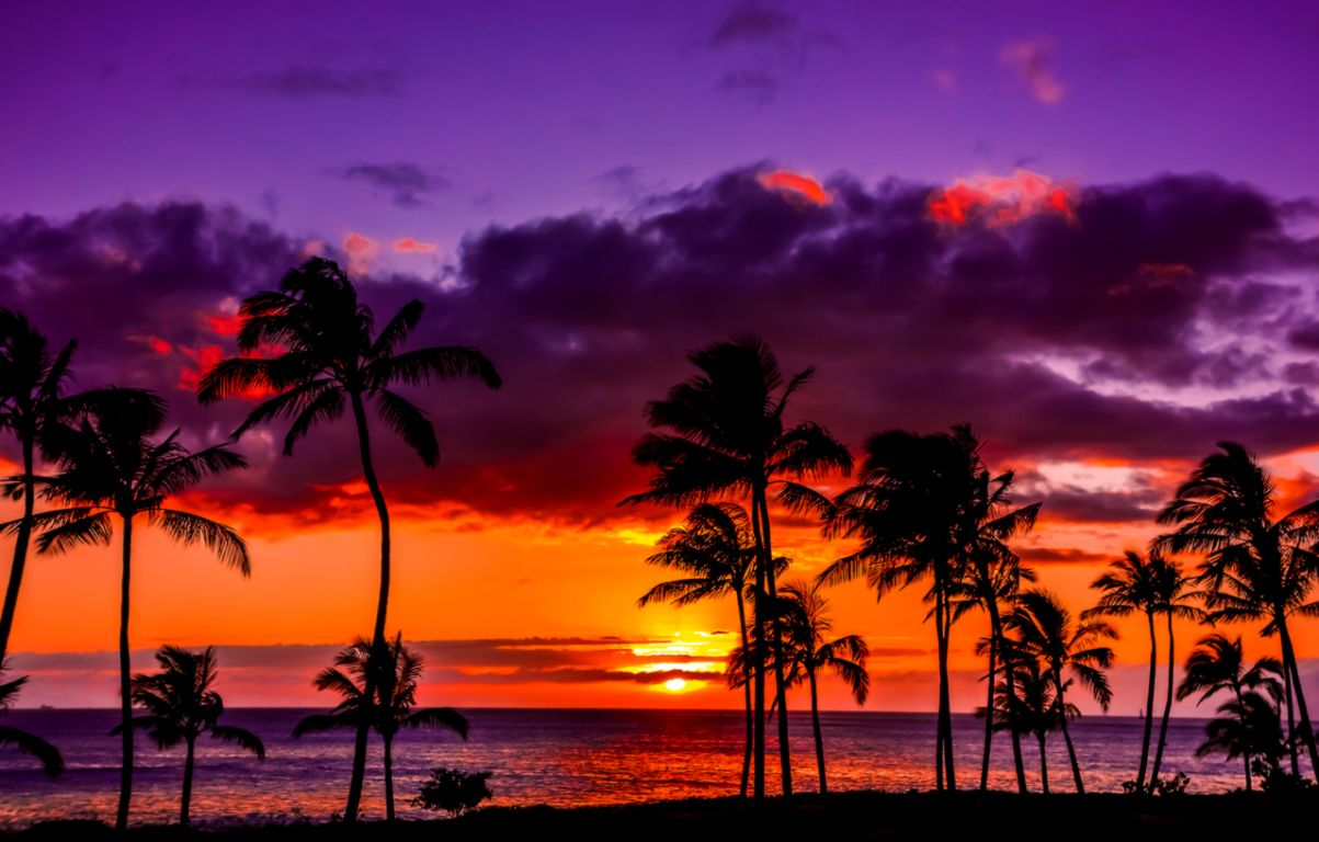 Hawaiian Sunset — Recipes Hubs