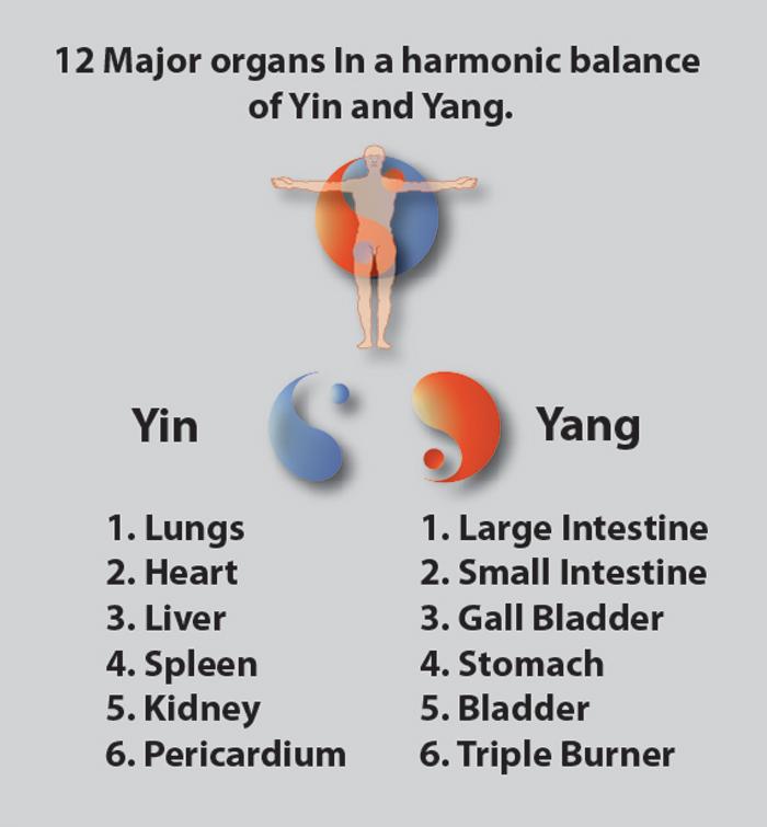Qigong Healing and Health: Master So creates visual aids to illustrate ...