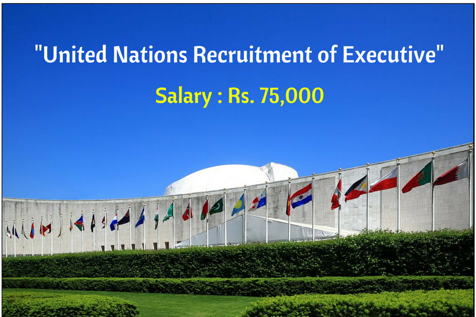 Update jobs united nations development programme undp recruitment 2015 01 vacancy project officer sciox Gallery