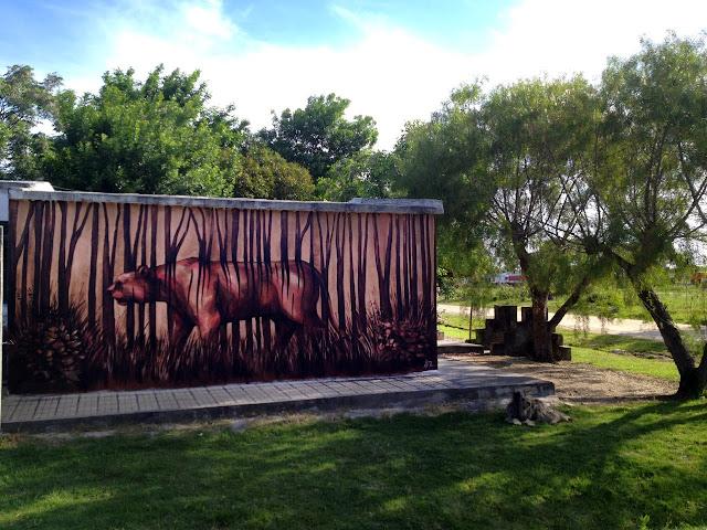 Street Art By Franco Fasoli Aka JAZ For The Vatelon Residency In Villa Soriano, Uruguay. 3