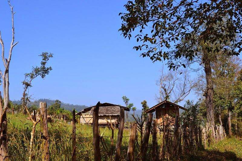 Thailande, Treck, village, Karen, Tribu, Mae Taeng, Bann Pang Khao