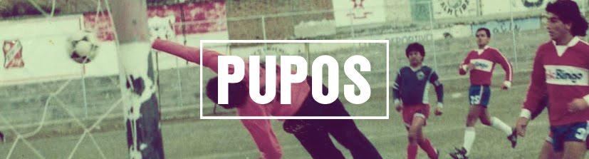Proyecto PUPOS