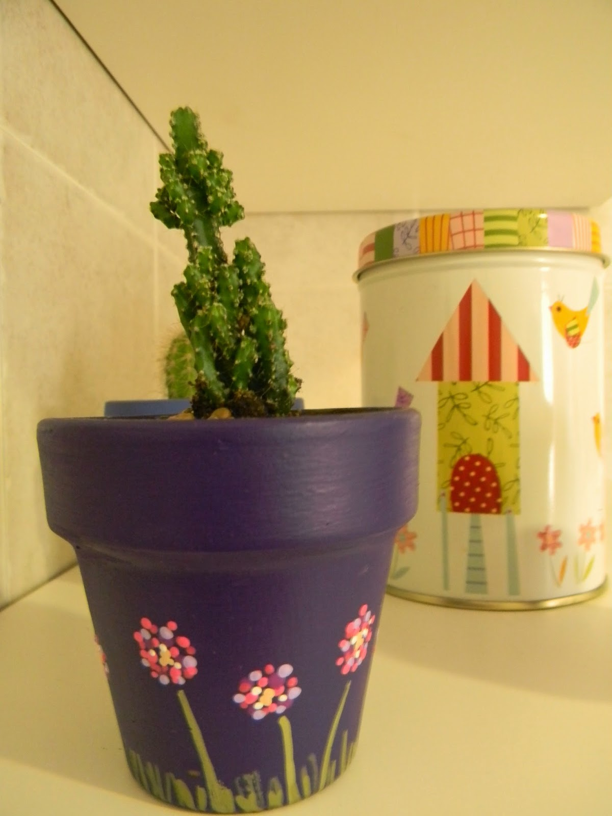 Macetas con estilo - Cactus en macetas pequenas ...
