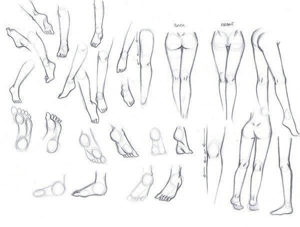 стопы, схема для рисования