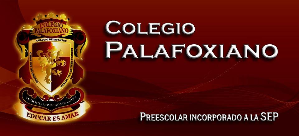 :: COLEGIO PALAFOXIANO ::