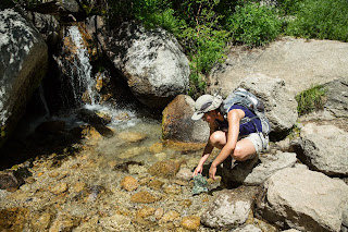 Cool water from creek at Mount Whitney Trail