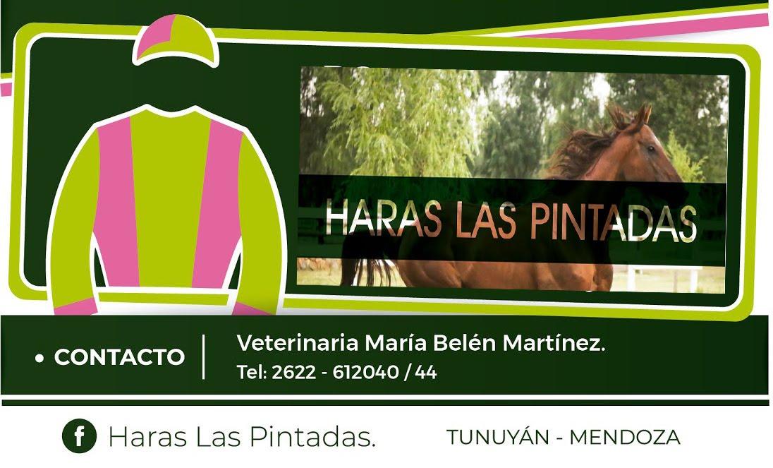 HARAS LAS PINTADAS