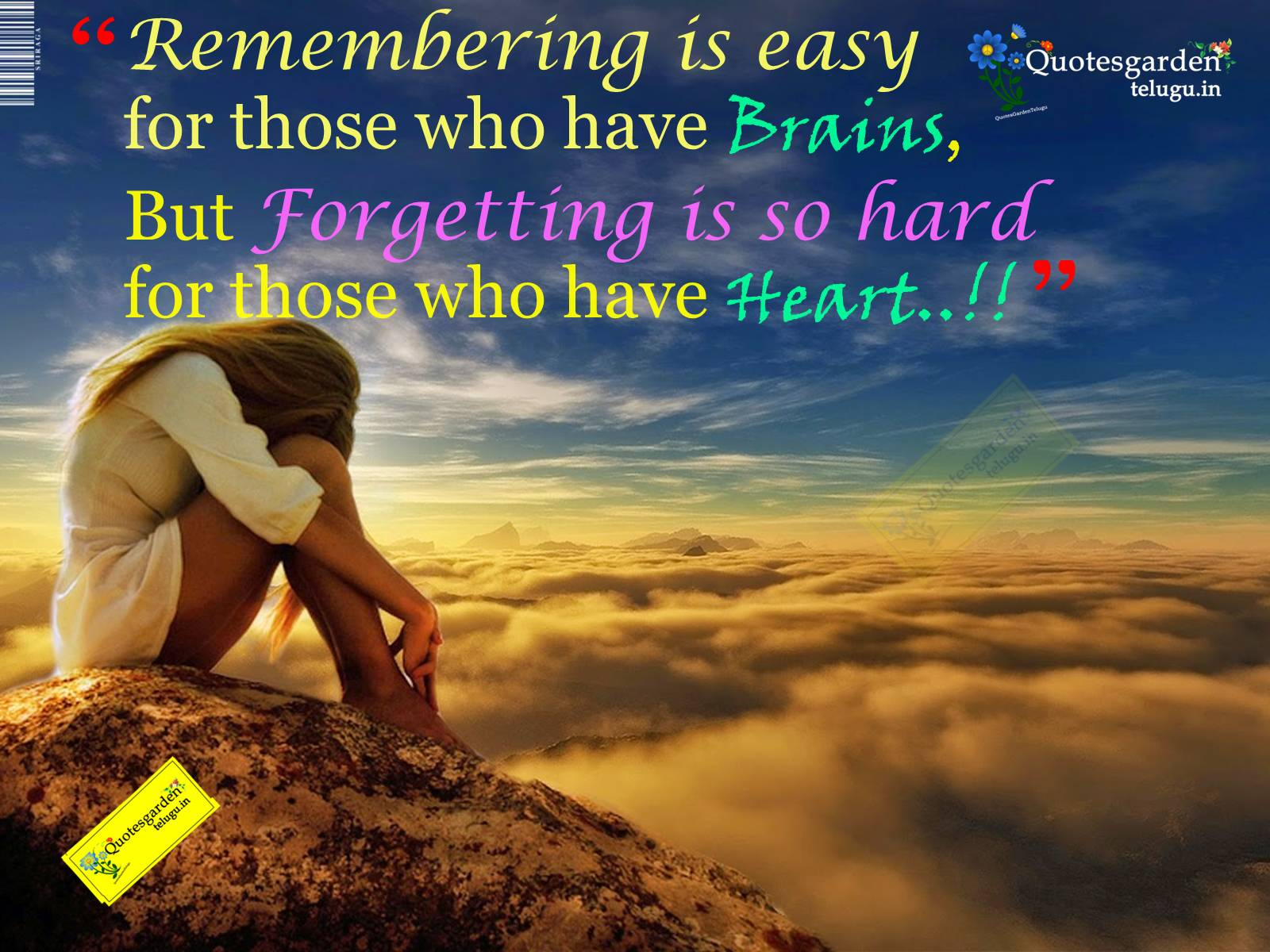 latest heart touching love quotes with hd images quotes