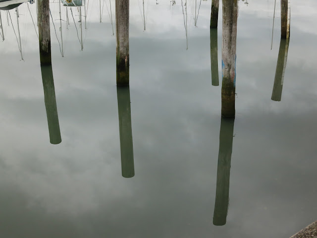 Wooden Mooring Poles and their reflections in still water.