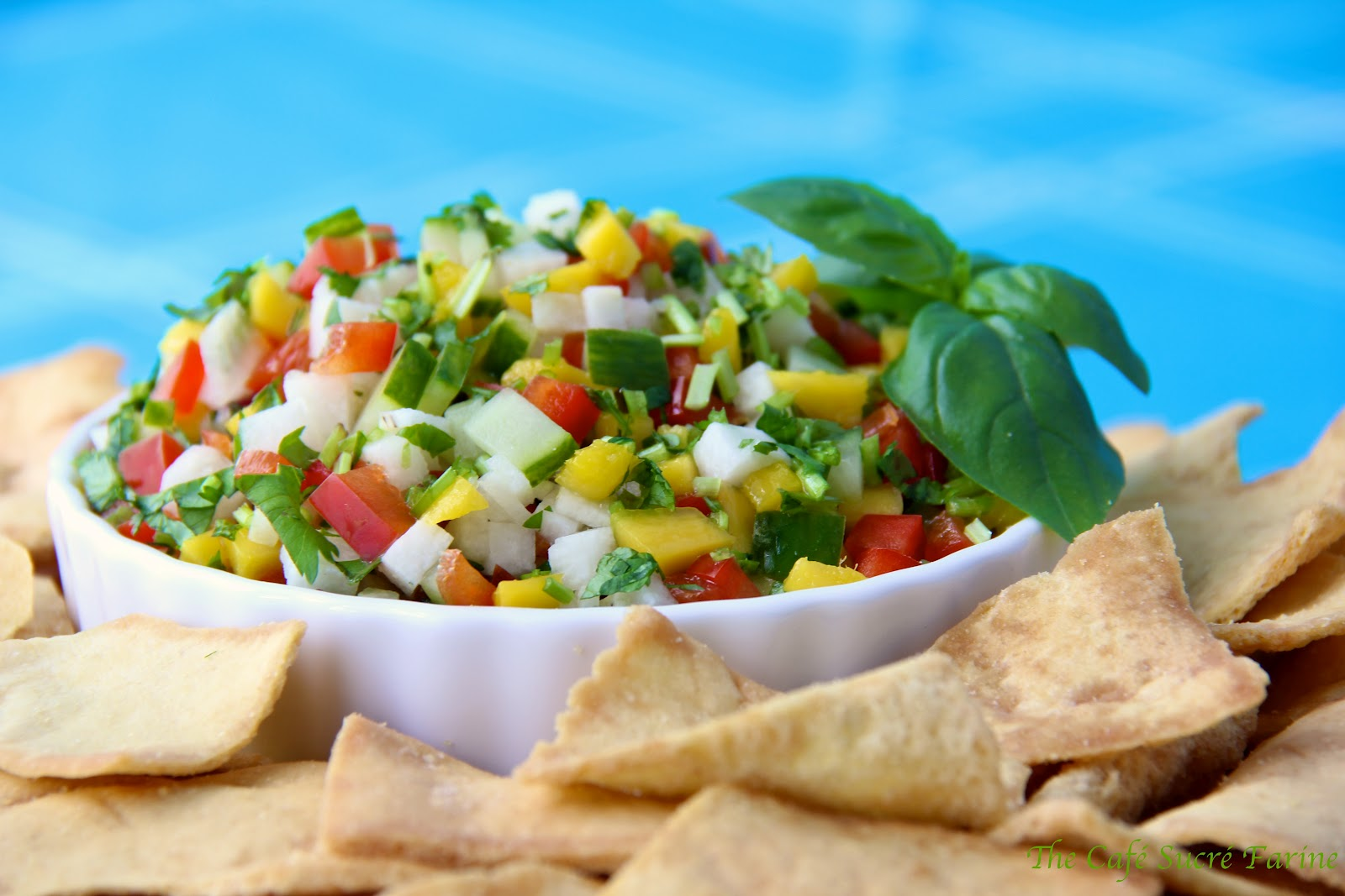 Mango, Jicama & Cucumber Salsa/Relish/Salad | The Café Sucre Farine