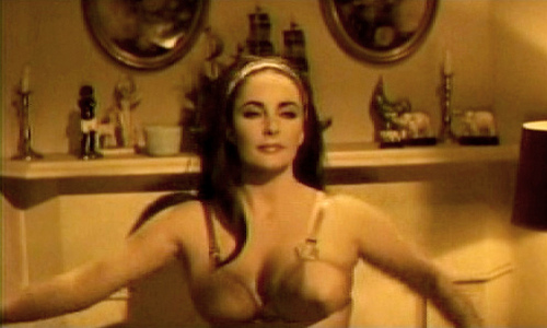 Elizabeth taylor nude having sex — img 5