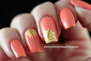 Born Pretty Store: Feather Water Decals