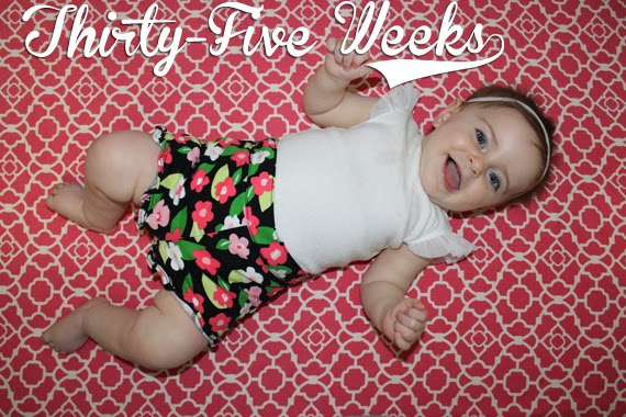 http://meetthegs.blogspot.com/2014/03/lilly-anne-35-weeks.html