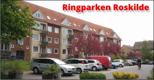 Bevar Ringparken i Roskilde