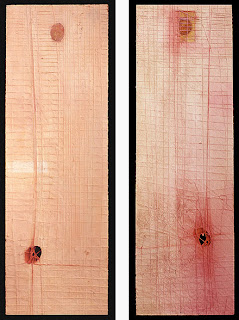 Skin/Flesh (frontside / backside), 1999. oil & mixed media on wood. 91.5 x 28.6 cm
