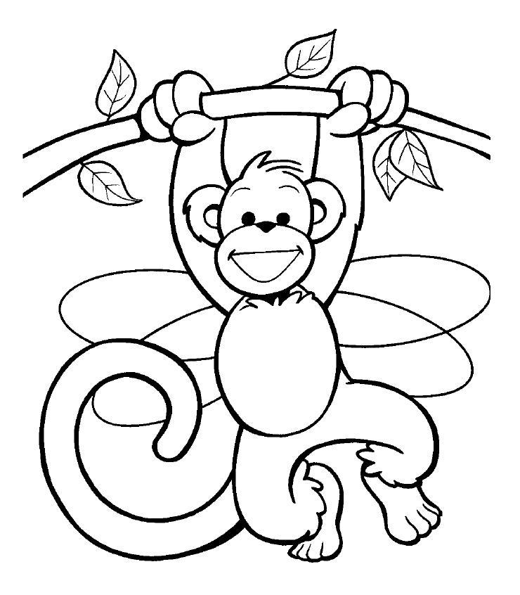 Dibujos de changos bebes - Imagui