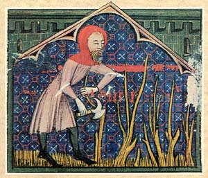 saint alexander