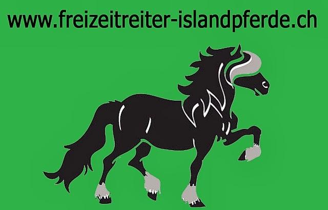 Freizeitreiter Islandpferde