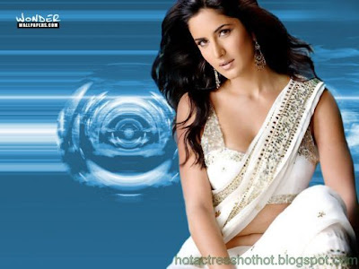katrina kaif hot pics and wallpapers in a white saree