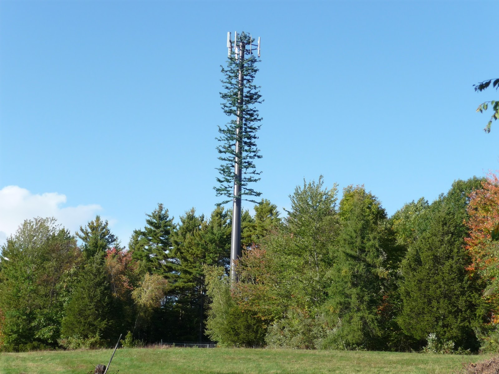 Cell phone towers for home