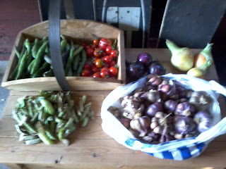 broad beans, garlic, tomatoes, red onions, white onions and peas