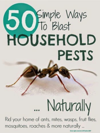 Get Rid Of Household Pests Naturally @ Mums Make Lists