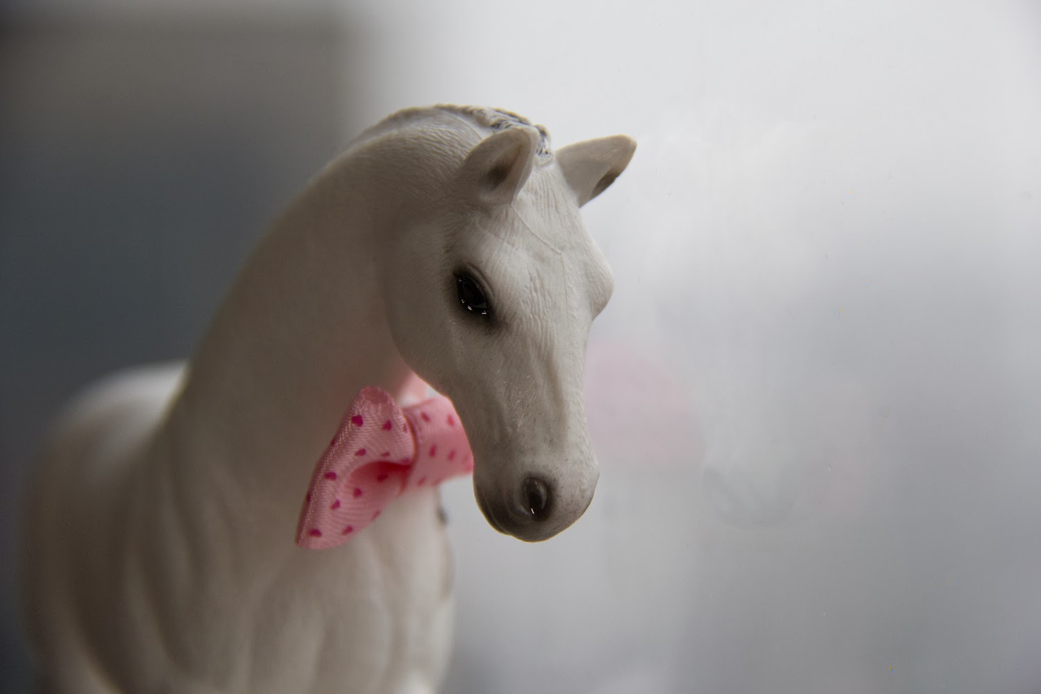 Year-of-the-horse, Chinese-New-Year-2014, White-horse, Pink-Bow-Tie