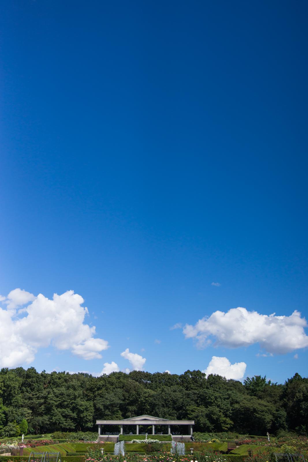 青空と深大寺植物公園噴水広場の写真