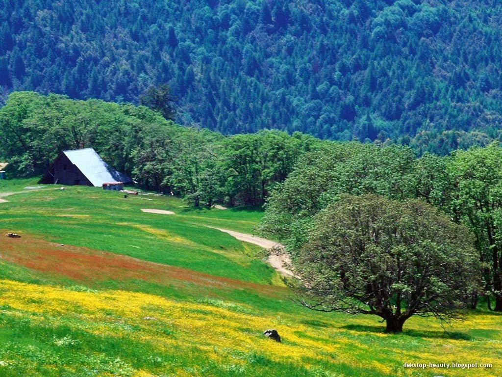 beautiful nature photography | Nice Pics Gallery